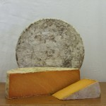 Thomas Hoe Stevenson Aged Leicestershire Red
